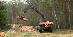 setor florestal SPEEDDATA